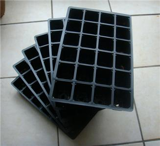seedling-tray
